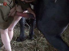 Stream animal porn Free Animal